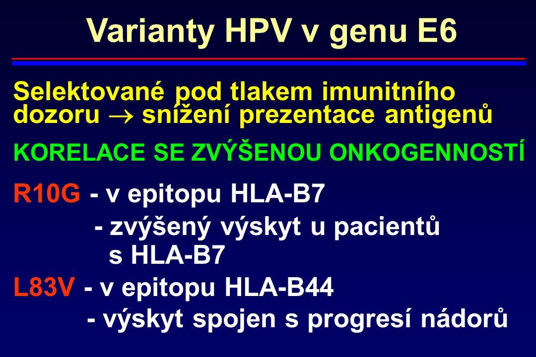 Varianty HPV v genu E6 Selektované pod tlakem imunitního