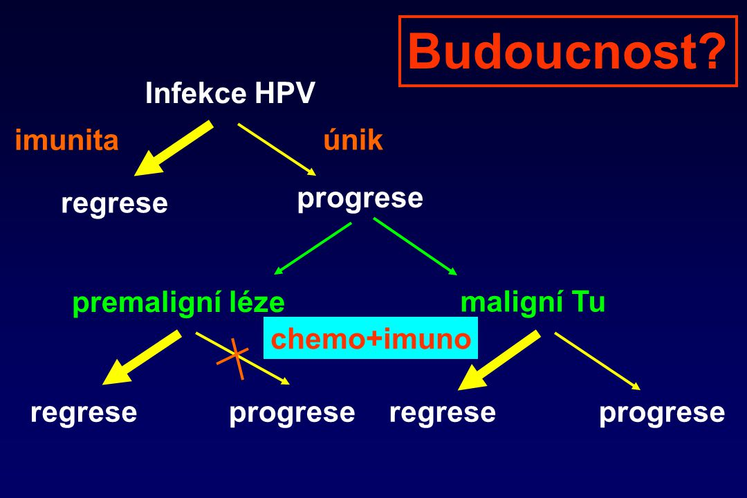 Budoucnost Infekce HPV imunita únik progrese regrese premaligní léze