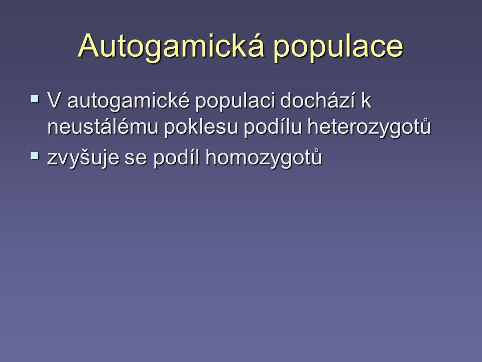 Autogamická populace V autogamické populaci dochází k neustálému poklesu podílu heterozygotů.