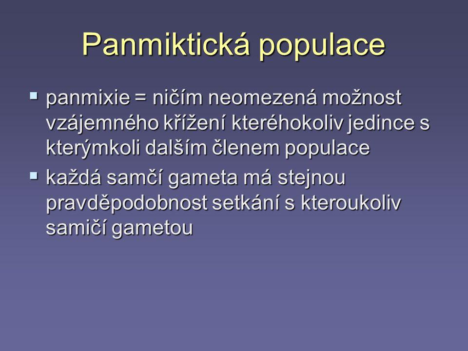 Panmiktická populace panmixie = ničím neomezená možnost vzájemného křížení kteréhokoliv jedince s kterýmkoli dalším členem populace.