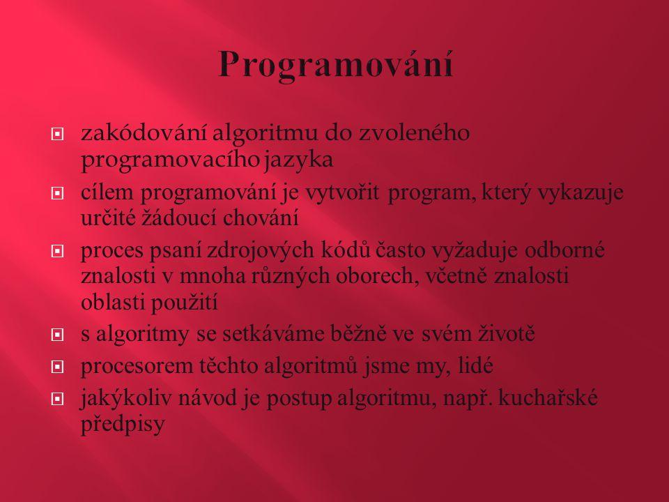 Programování zakódování algoritmu do zvoleného programovacího jazyka