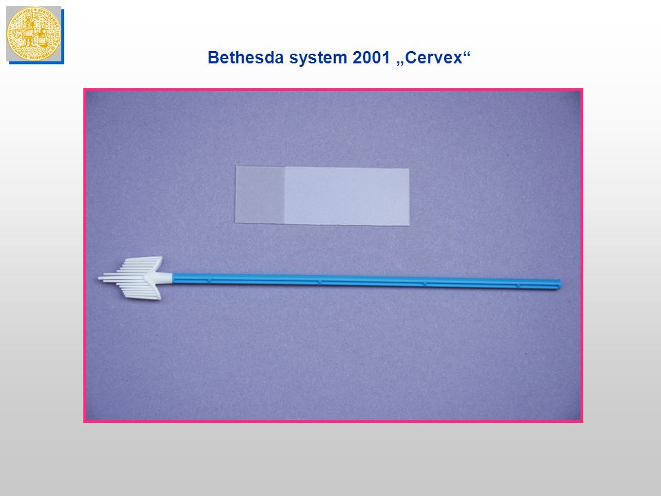 """Bethesda system 2001 """"Cervex"""