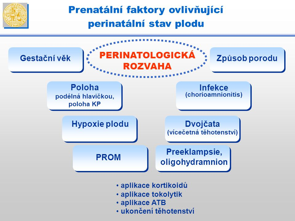 Prenatální faktory ovlivňující perinatální stav plodu