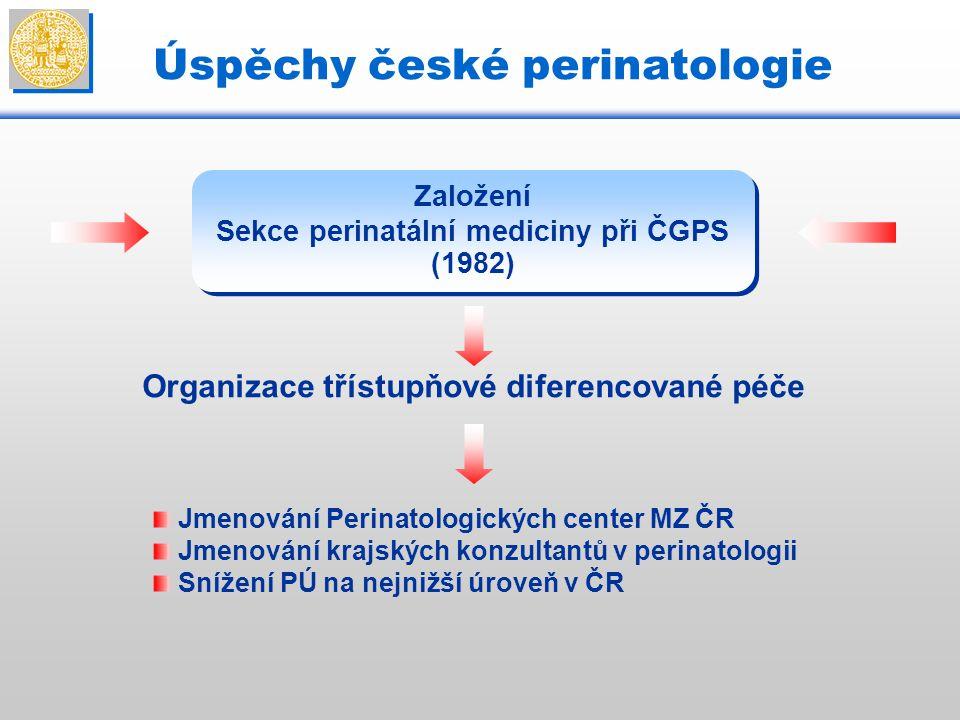 Úspěchy české perinatologie