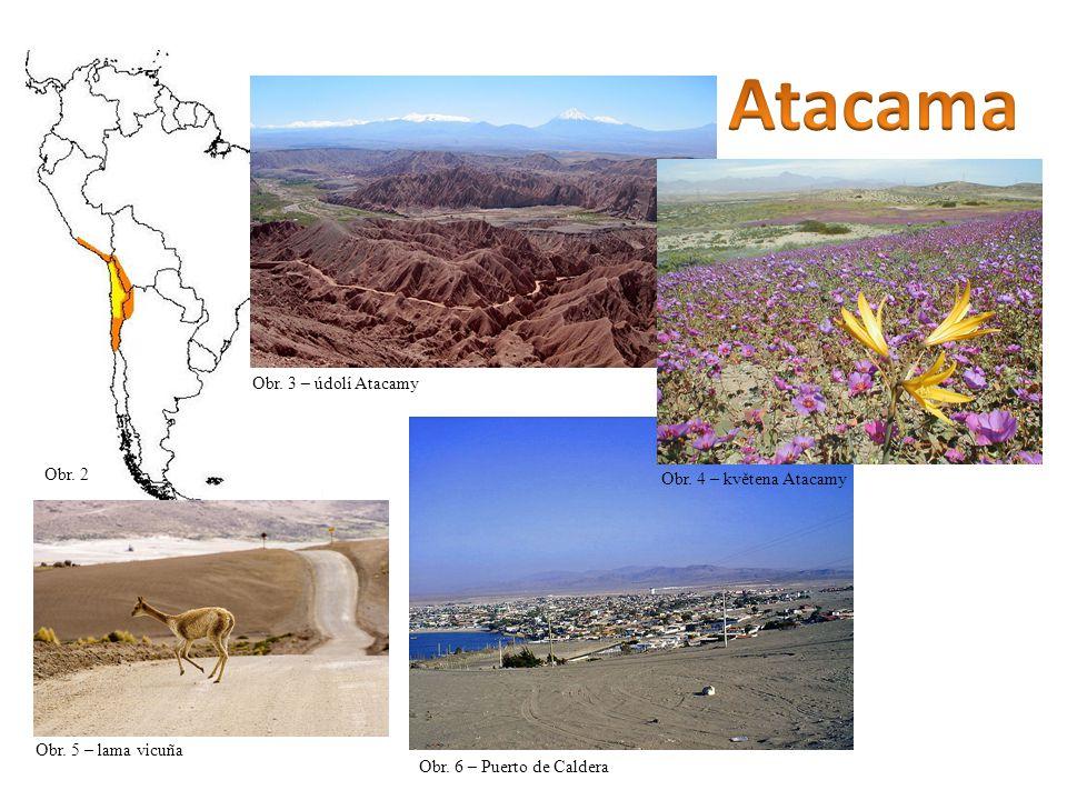 Atacama Obr. 3 – údolí Atacamy Obr. 2 Obr. 4 – květena Atacamy