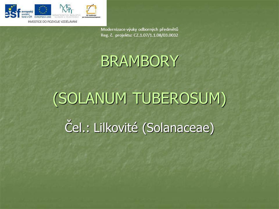 BRAMBORY (SOLANUM TUBEROSUM)