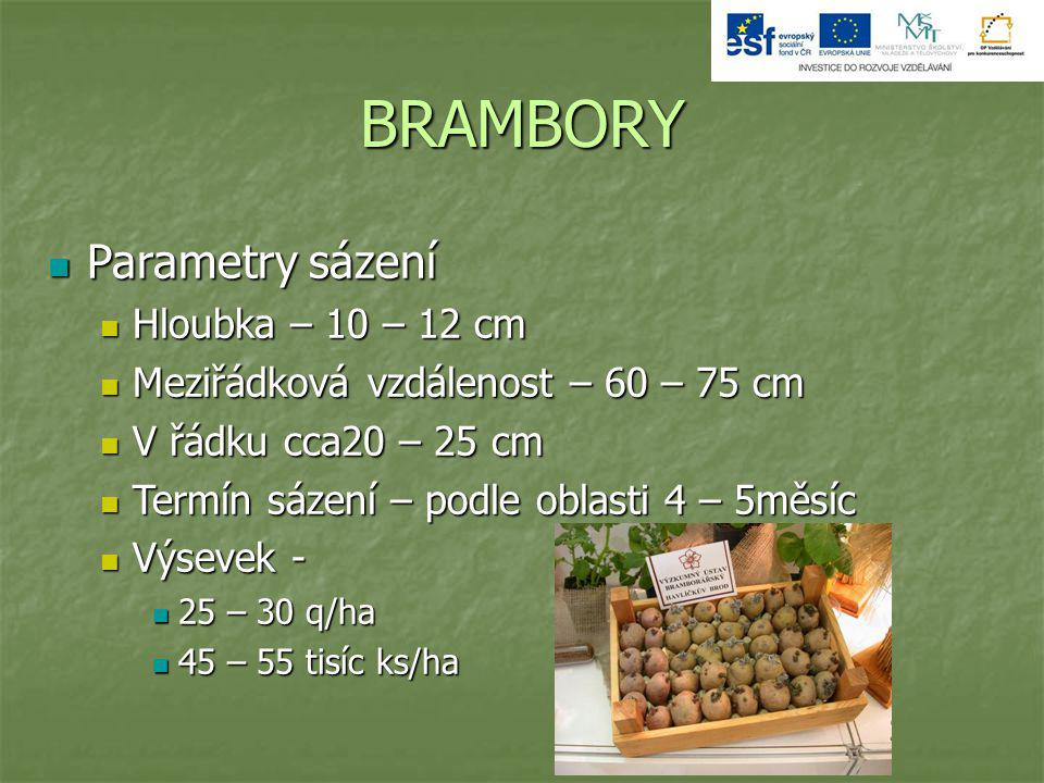 BRAMBORY Parametry sázení Hloubka – 10 – 12 cm