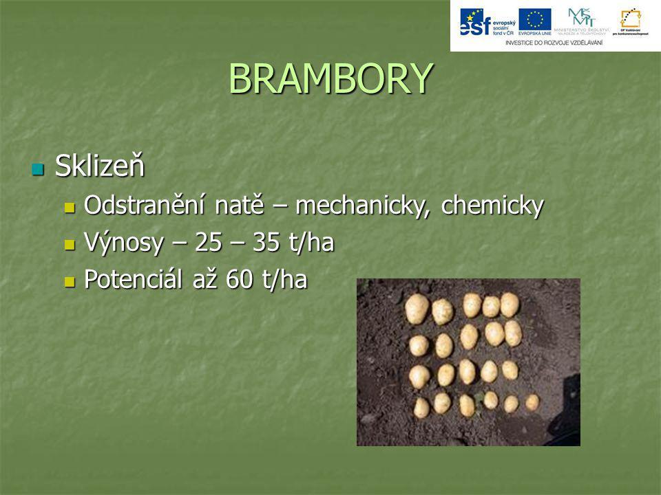 BRAMBORY Sklizeň Odstranění natě – mechanicky, chemicky