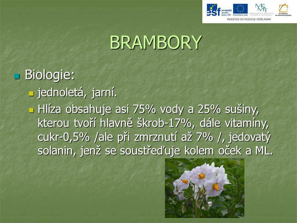 BRAMBORY Biologie: jednoletá, jarní.