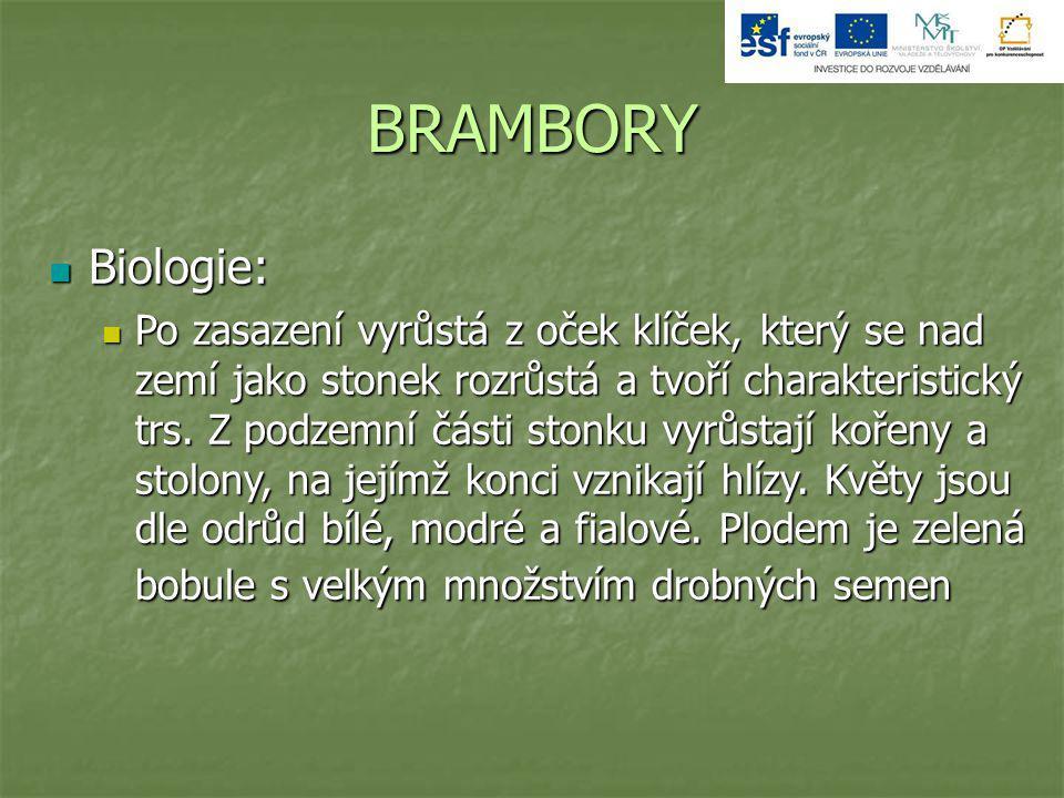 BRAMBORY Biologie: