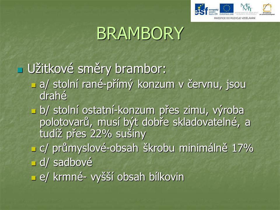 BRAMBORY Užitkové směry brambor: