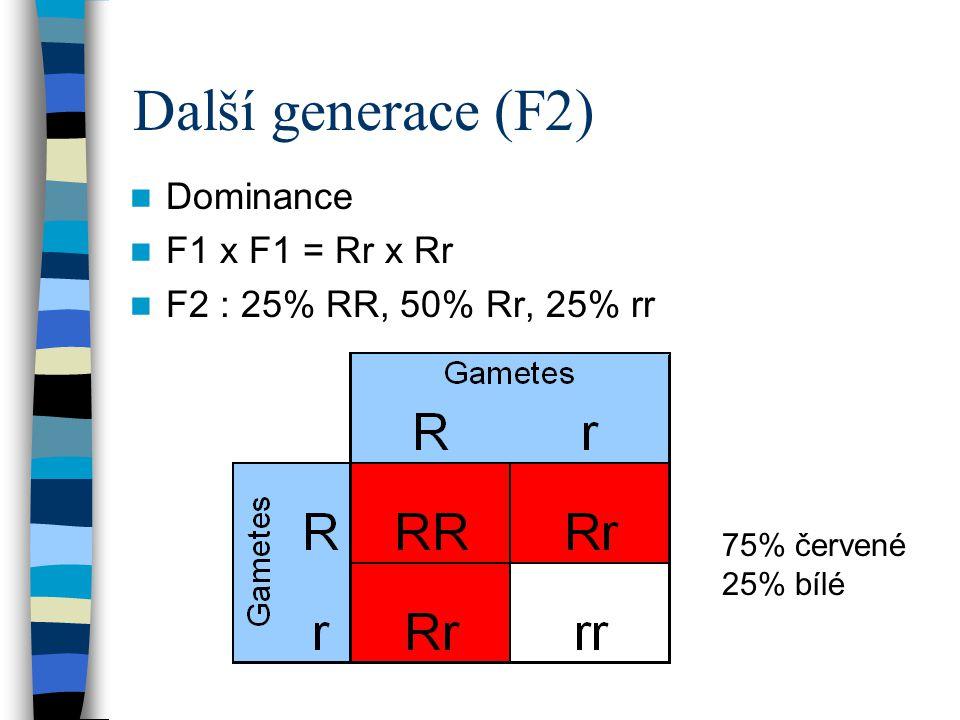 Další generace (F2) Dominance F1 x F1 = Rr x Rr