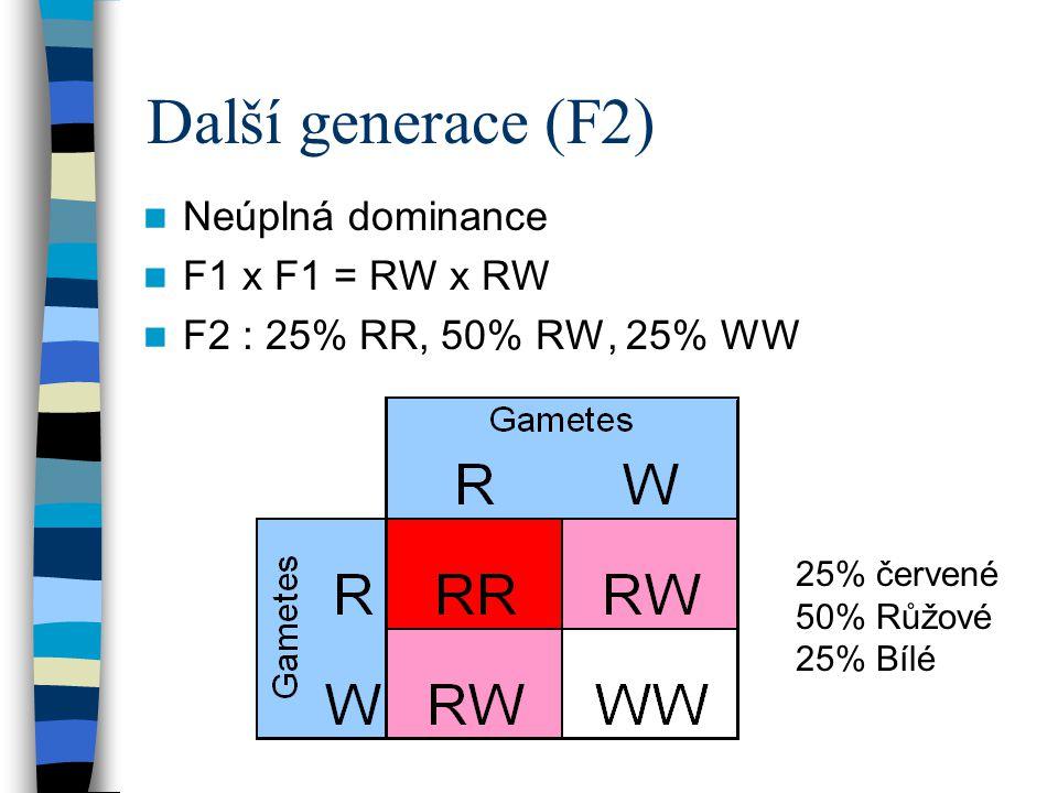Další generace (F2) Neúplná dominance F1 x F1 = RW x RW