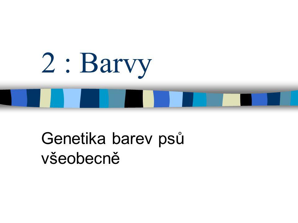 Genetika barev psů všeobecně