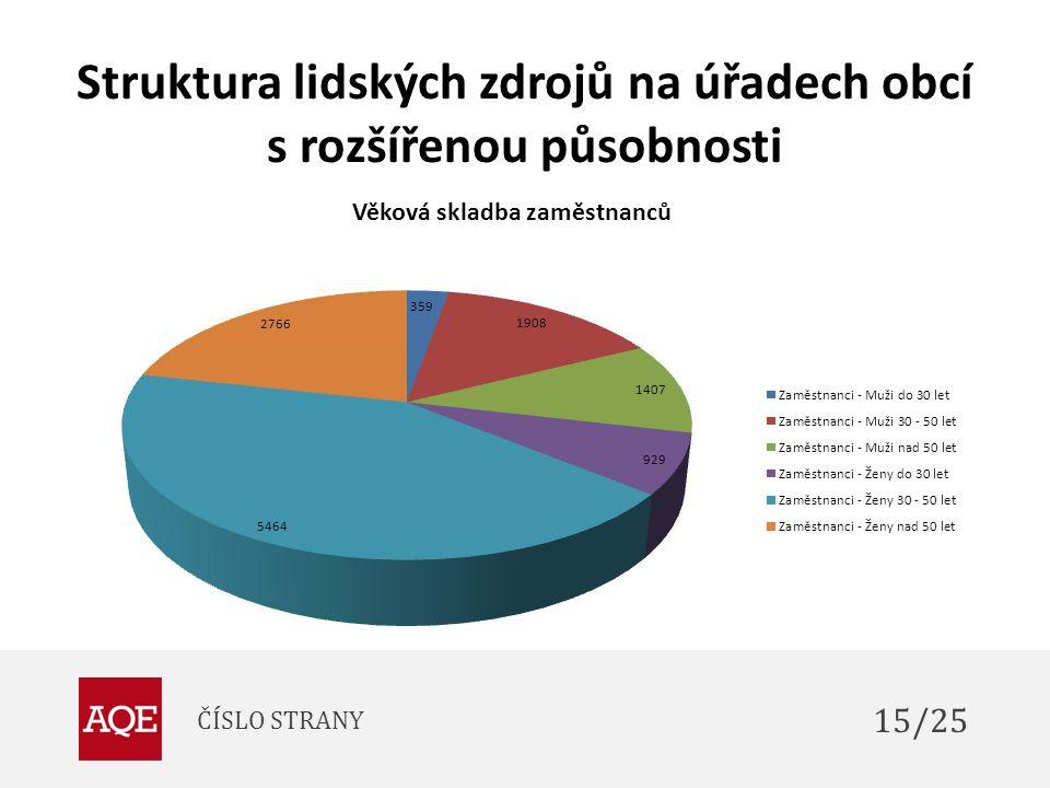 Struktura lidských zdrojů na úřadech obcí s rozšířenou působnosti