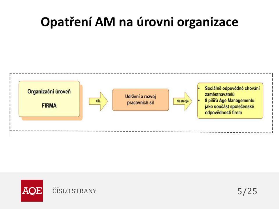 Opatření AM na úrovni organizace