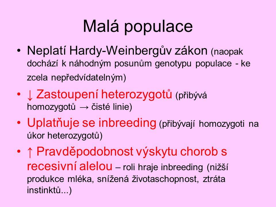 Malá populace Neplatí Hardy-Weinbergův zákon (naopak dochází k náhodným posunům genotypu populace - ke zcela nepředvídatelným)