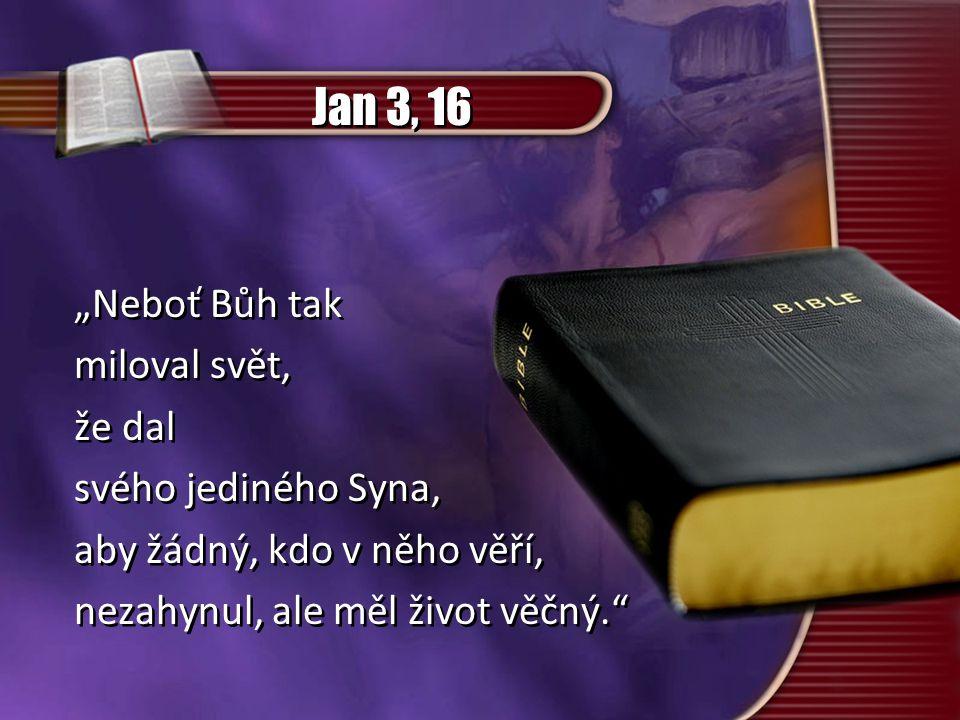 """Jan 3, 16 """"Neboť Bůh tak miloval svět, že dal svého jediného Syna,"""