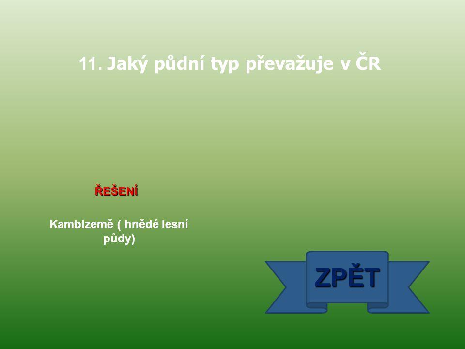 11. Jaký půdní typ převažuje v ČR Kambizemě ( hnědé lesní půdy)