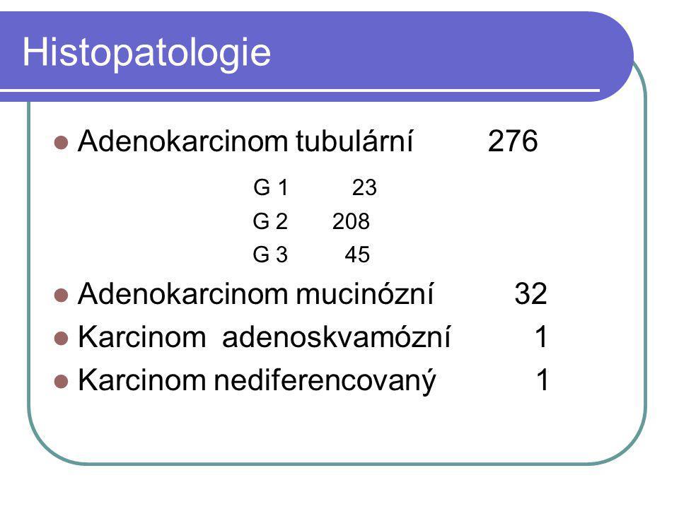 Histopatologie Adenokarcinom tubulární 276 G 1 23