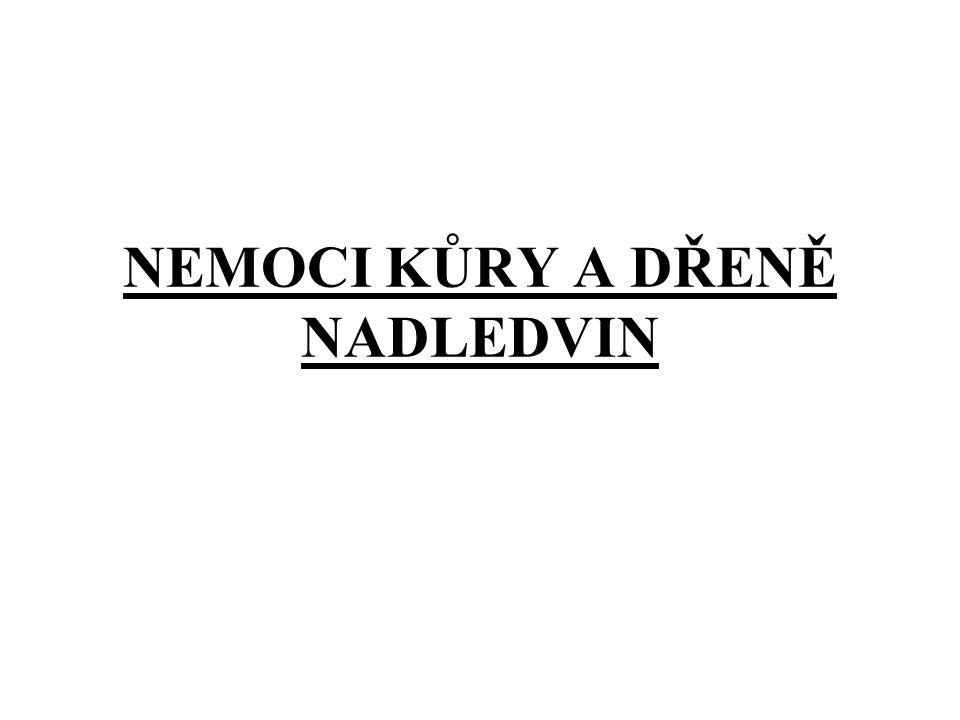 NEMOCI KŮRY A DŘENĚ NADLEDVIN