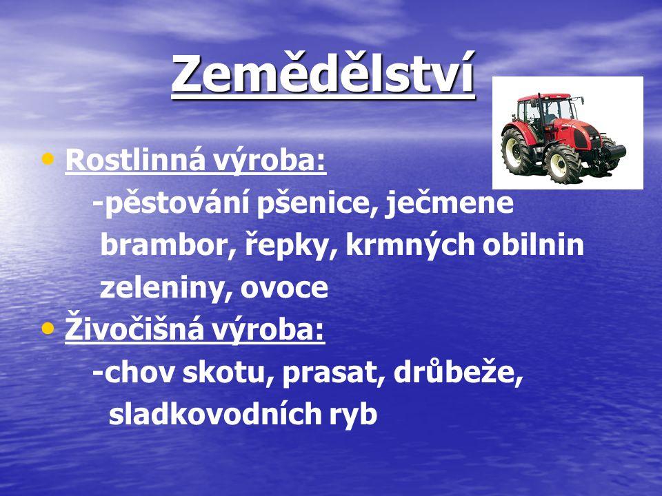 Zemědělství Rostlinná výroba: -pěstování pšenice, ječmene