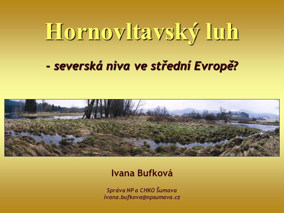 - severská niva ve střední Evropě