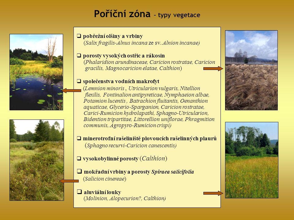Poříční zóna - typy vegetace
