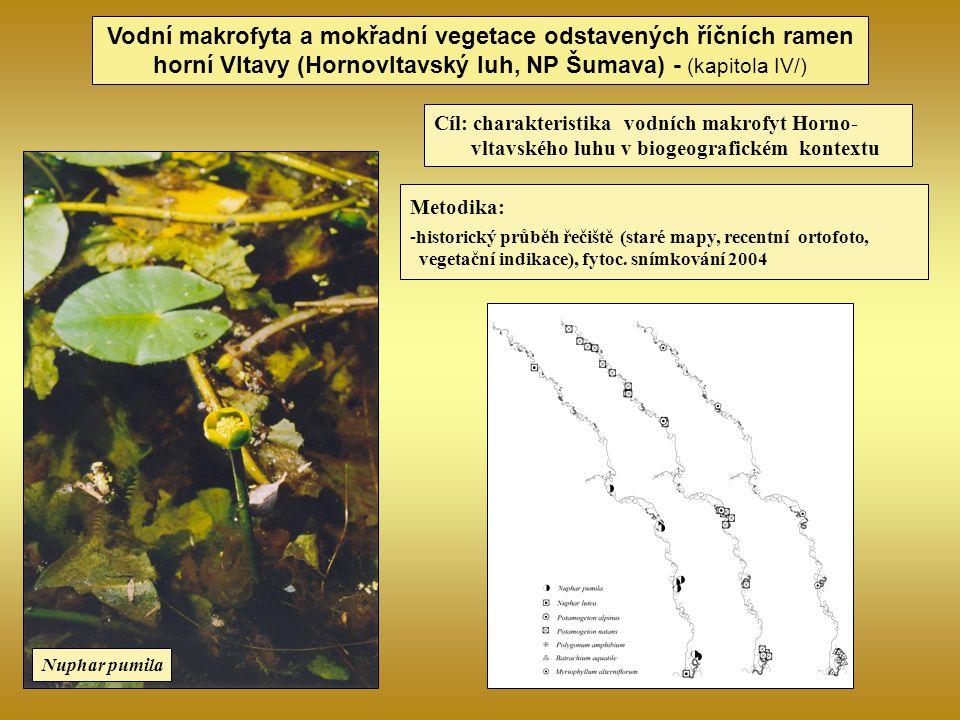 Vodní makrofyta a mokřadní vegetace odstavených říčních ramen horní Vltavy (Hornovltavský luh, NP Šumava) - (kapitola IV/)