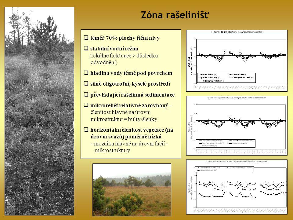 Zóna rašelinišť téměř 70% plochy říční nivy stabilní vodní režim