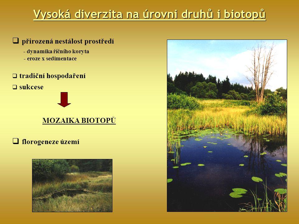 Vysoká diverzita na úrovni druhů i biotopů