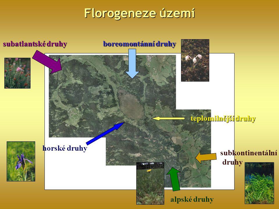 Florogeneze území subatlantské druhy boreomontánní druhy