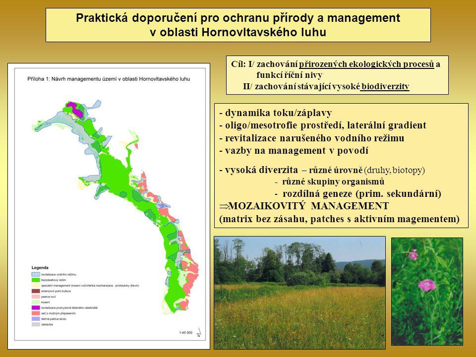 Praktická doporučení pro ochranu přírody a management v oblasti Hornovltavského luhu