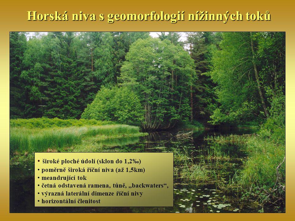 Horská niva s geomorfologií nížinných toků