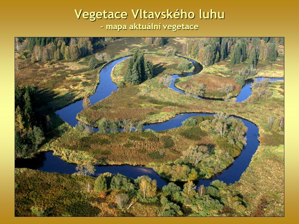 Vegetace Vltavského luhu - mapa aktuální vegetace