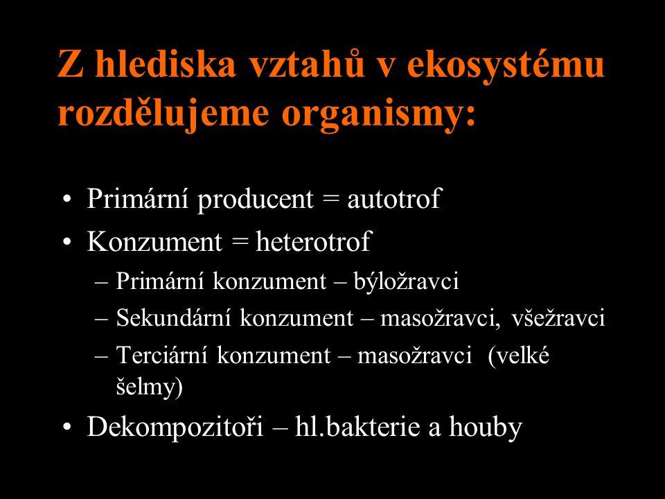 Z hlediska vztahů v ekosystému rozdělujeme organismy: