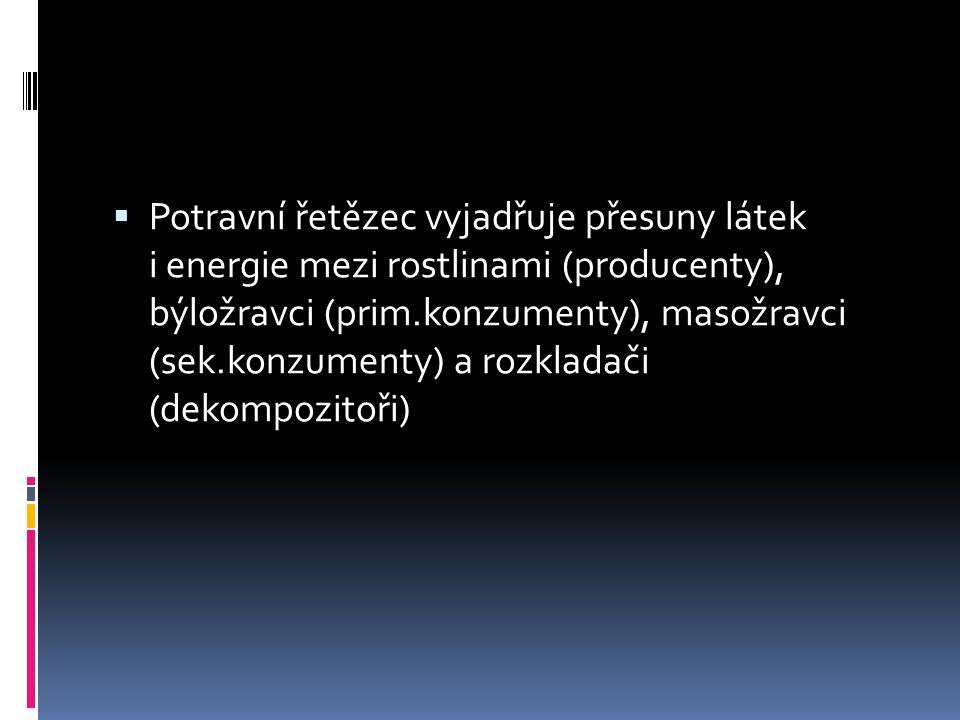 Potravní řetězec vyjadřuje přesuny látek i energie mezi rostlinami (producenty), býložravci (prim.konzumenty), masožravci (sek.konzumenty) a rozkladači (dekompozitoři)