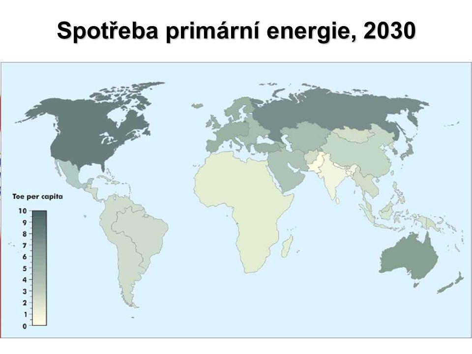 Spotřeba primární energie, 2030