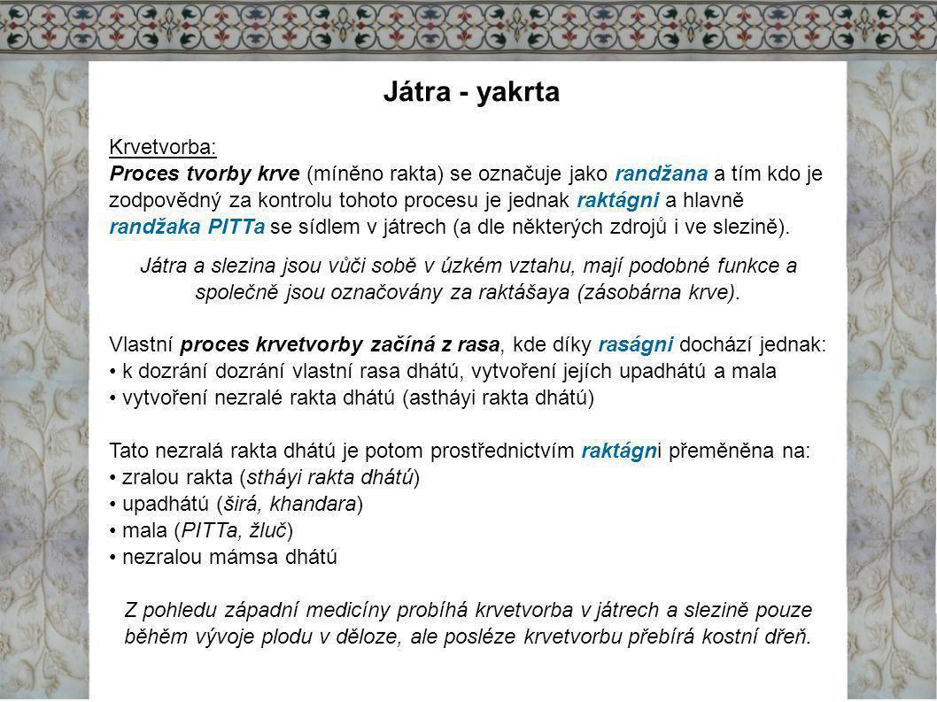 Játra - yakrta Krvetvorba: