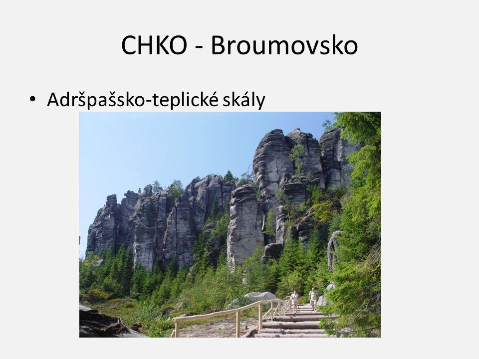 CHKO - Broumovsko Adršpašsko-teplické skály