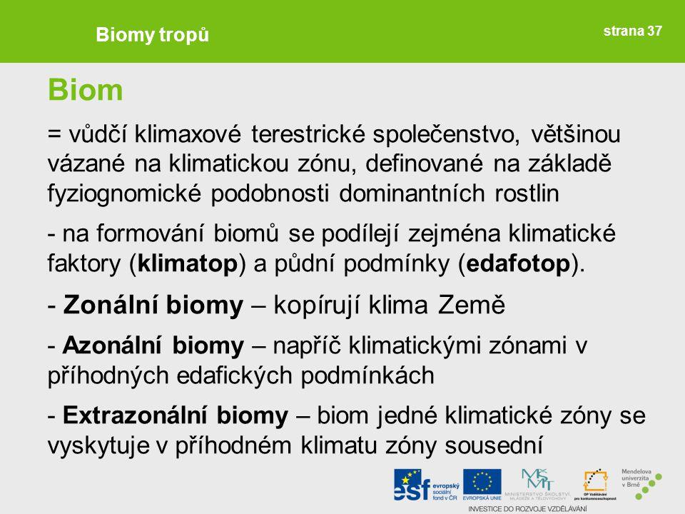 Biom - Zonální biomy – kopírují klima Země