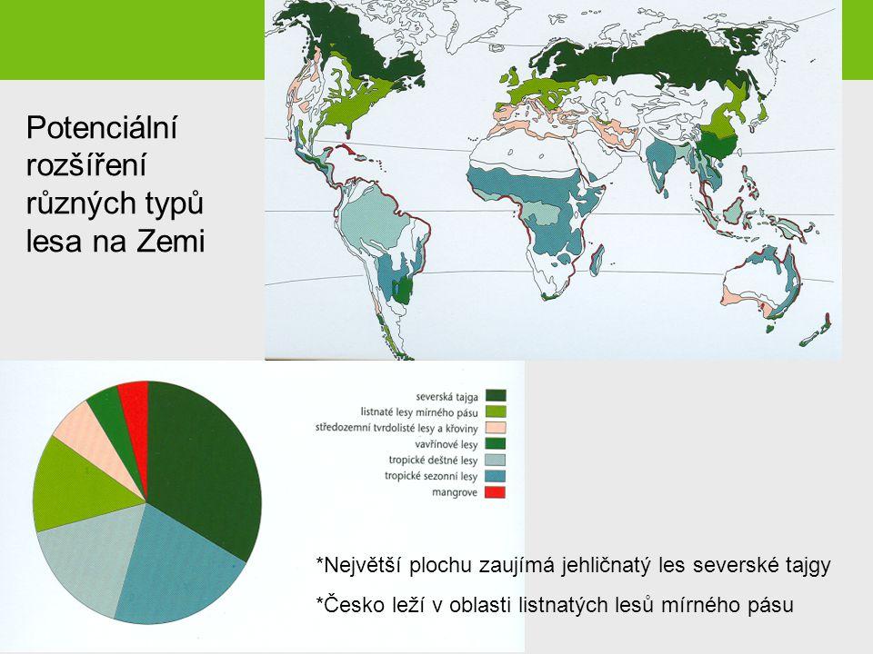 Potenciální rozšíření různých typů lesa na Zemi
