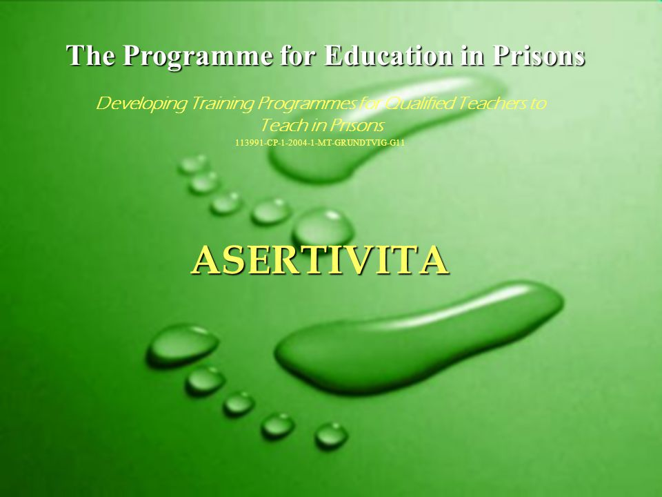 The Programme for Education in Prisons