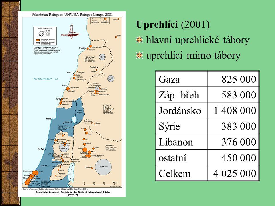 Uprchlíci (2001) hlavní uprchlické tábory. uprchlíci mimo tábory. Gaza. 825 000. Záp. břeh. 583 000.