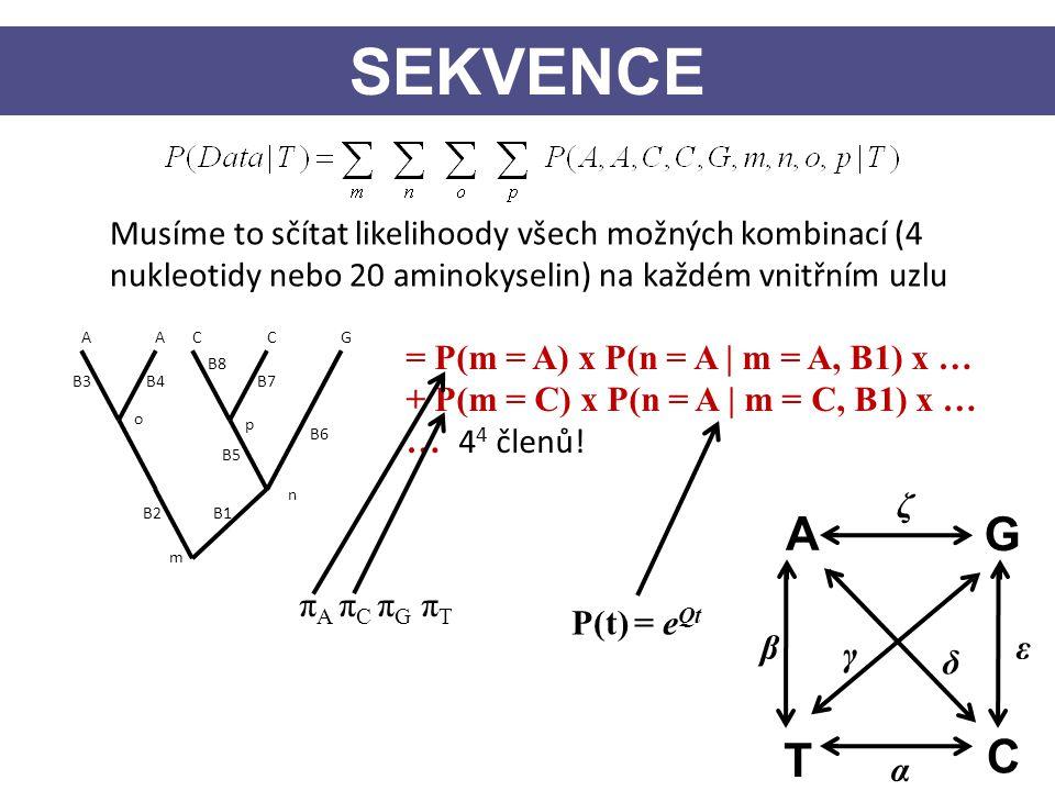 SEKVENCE Musíme to sčítat likelihoody všech možných kombinací (4 nukleotidy nebo 20 aminokyselin) na každém vnitřním uzlu.