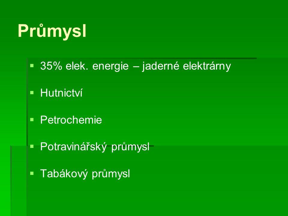 Průmysl 35% elek. energie – jaderné elektrárny Hutnictví Petrochemie