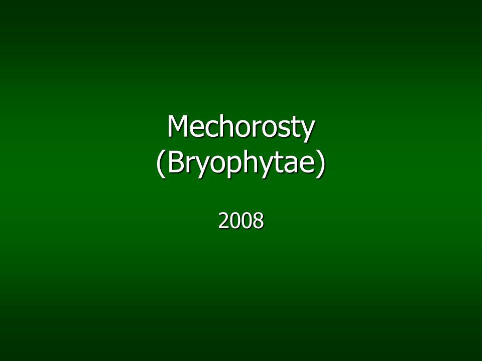 Mechorosty (Bryophytae)