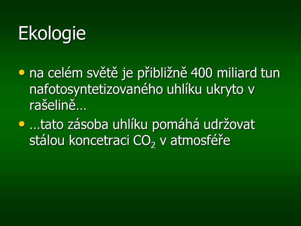 Ekologie na celém světě je přibližně 400 miliard tun nafotosyntetizovaného uhlíku ukryto v rašelině…