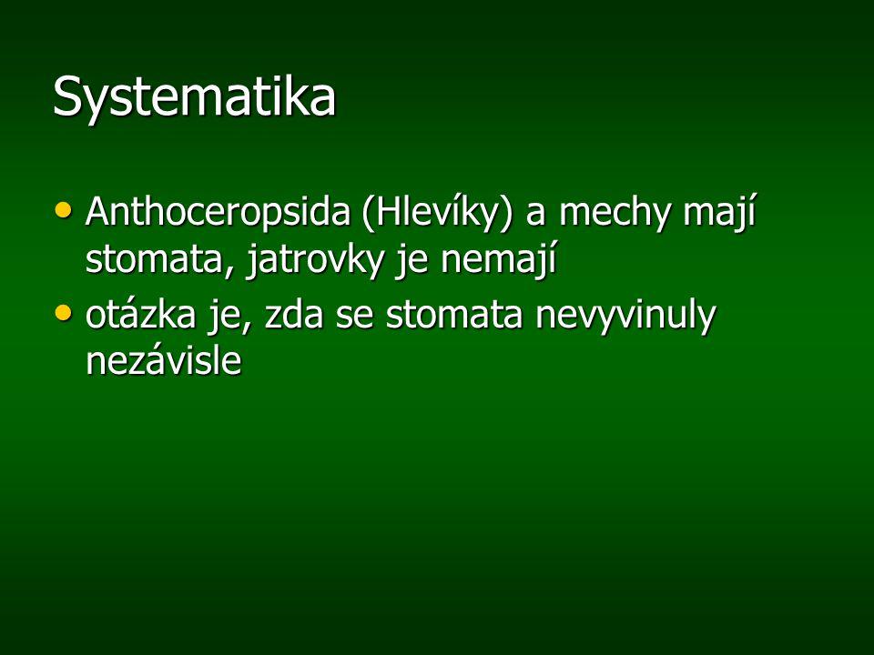 Systematika Anthoceropsida (Hlevíky) a mechy mají stomata, jatrovky je nemají.