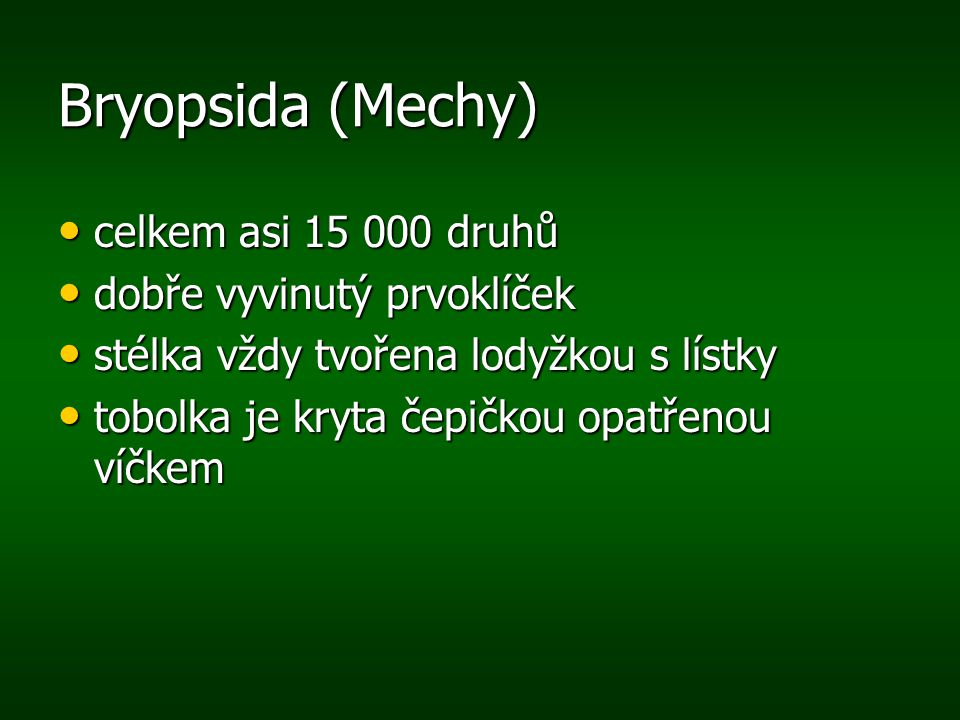 Bryopsida (Mechy) celkem asi 15 000 druhů dobře vyvinutý prvoklíček